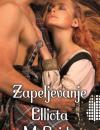 Mackenzies / Highland Pleasures, 5.knjiga